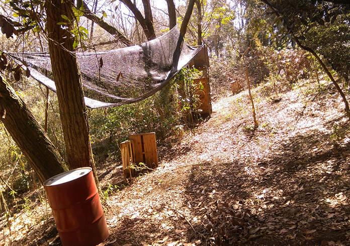 ひでちゃんの裏庭